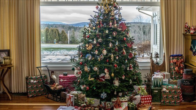 City to collect Christmas trees for recycling