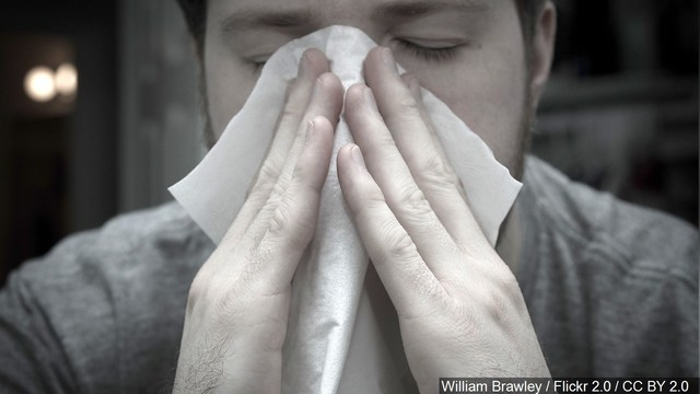 Cuomo signs executive order to combat flu epidemic in NY