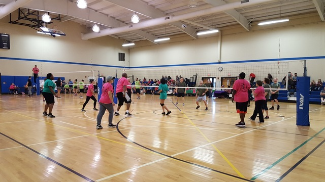 Volleyball 4 Autism fundraiser needs teams and sponsors