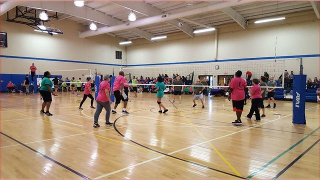 Sponsors Needed and Teams Forming for Volleyball 4 Autism