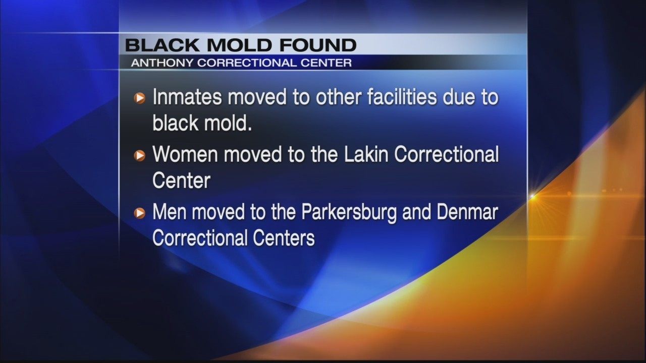 Black mold prompts inmate relocation in Greenbrier County