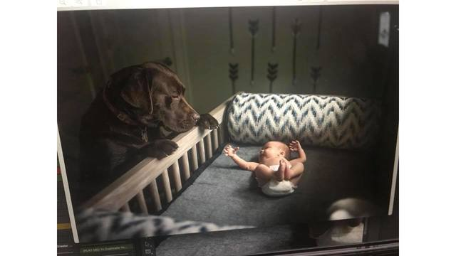 8-3-18 This is CJ checking out his new brother Hayes in his crib from Amber Lilly_1533739109949.jpg.jpg