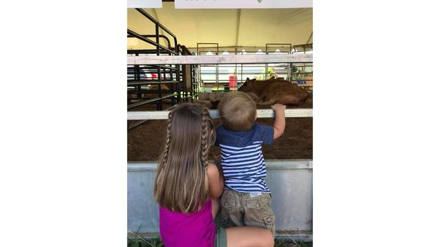 My kids age 5 and 1yr, at the birthing center waiting for the baby cows to be born from Jack N Samantha Boley_1534188861744.jpg.jpg