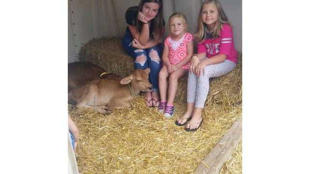 Jasmin,laci and Ciara enjoying the newborn calves from Tasha Hull_1534282119131.jpg.jpg
