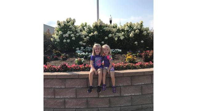 Taylor and Leah Wood from Shady Spring enjoying their sun filled day at the 2018 fair from Heidi Wood_1534281998409.jpg.jpg