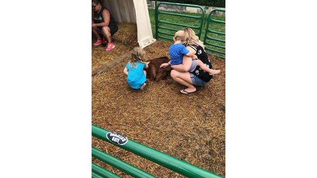 my babies Kenli and Talon & myself with the baby calf - one of my kids favorite parts of the fair from Andria Hatfield_1534281974347.jpg.jpg